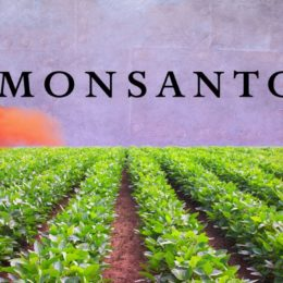 Monsanto Workers Faced Deeper Job Cuts On Falling Sales (NYSE:MON)